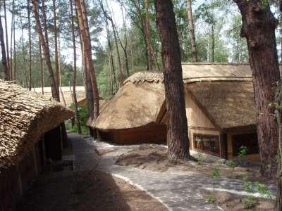 село из камыша