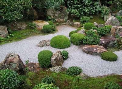 гравийный сад с зеленью, фото