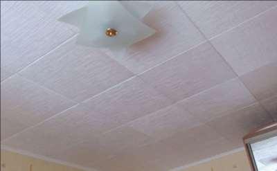 Фото потолочная плитка