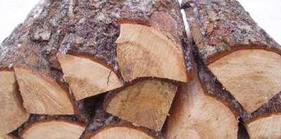 Особенности разных видов дров для отопления