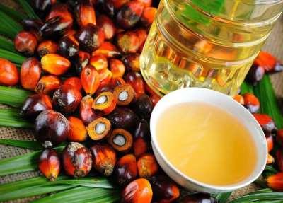 Чем может быть опасно пальмовое масло для человека?