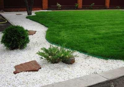 А вы готовите почву под газон?