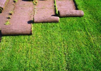 Технология укладки рулонного газона